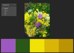 Bild-ta-fram-färgkod